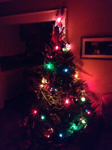 Xmas Tree 13-E